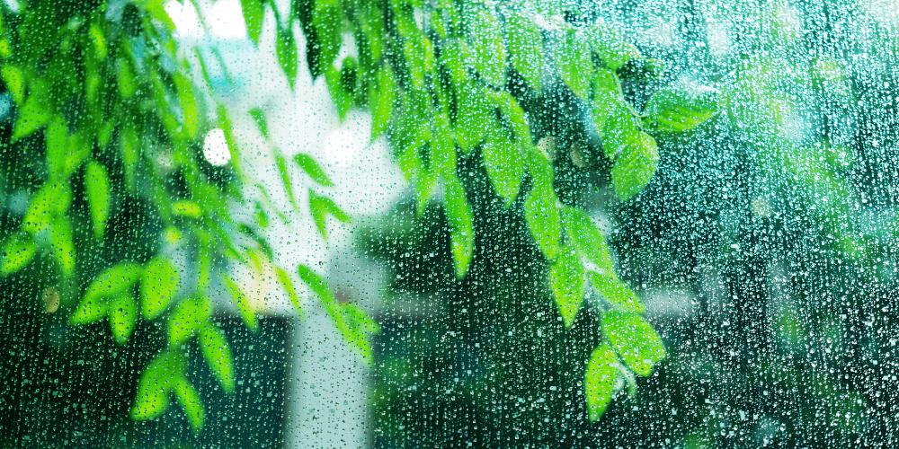 豪雨があった時の備えとして、電子化が役に立つ?